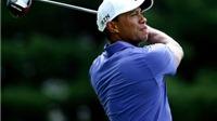 Tiger Woods bình phục chấn thương thần kỳ