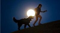 Mãn nhãn 'siêu trăng' khắp nơi trên thế giới