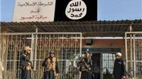 Mỹ bắt đầu không kích vào đất Syria