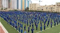 21 đoàn tham dự giải vô địch Vovinam thế giới tại Algeria