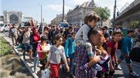Hungary ngừng chở xe buýt, người nhập cư lại đi bộ?
