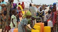 UNICEF báo động tình trạng trẻ vô gia cư