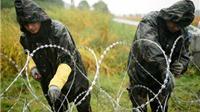 Đức cảnh báo 30% người di cư đến châu Âu giả mạo công dân Syria