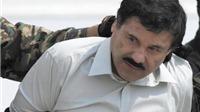Mexico xiết chặt thòng lọng quanh 'gã lùn nguy hiểm nhất'