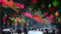 Chuyện Hà Nội: Đừng quá lạm dụng đèn hoa trên phố