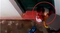 Buộc thôi việc một cô giáo trong vụ để trẻ mầm non phải ăn rác