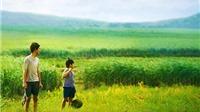 Chiếu miễn phí 20 phim tranh giải Bông Sen vàng