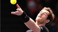 Davis Cup bị ảnh hưởng vì lo ngại khủng bố ở Brussels
