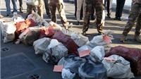 Cảnh sát phá đường dây ma túy lớn nhất châu Âu, thu 1,7 tấn cocain