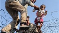 1 triệu người di cư đổ bộ vào châu Âu trong năm 2015