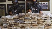 Tây Ban Nha bắt 12 kẻ buôn bán ma túy, tịch thu 3 tấn cocaine
