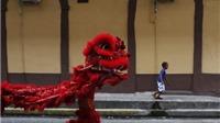 Chùm ảnh: Không khí Tết năm Khỉ tưng bừng khắp thế giới