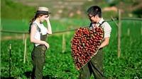 5 điểm đến mùa Valentine 2016