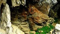 Khám phá Hang Chuột nơi 'Kong: Skull Island' sẽ ghi hình