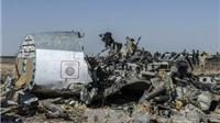 Nga gửi Ai Cập báo cáo chính thức về 'bọn tội phạm' đứng sau vụ tai nạn máy bay tại Sinai