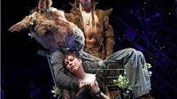 Triển lãm 11 khoảnh khắc kịch Shakespeare trong công-ten-nơ