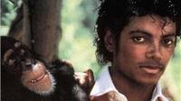 Michael Jackson qua cái nhìn của… tinh tinh