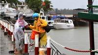 Hơn 1.100 du khách mắc kẹt trên đảo Cù Lao Chàm