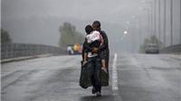 Những bức ảnh khốc liệt và đau đớn về người tị nạn vừa đoạt giải Pulitzer 2016