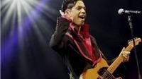 Prince 'tái chiếm' ngôi đầu BXH Billboard sau khi đột tử