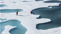 Sốc: Năm nay Bắc Cực có thể hết băng phủ sau 100 nghìn năm