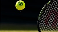 Tennis ngày 3/7: Djokovic không tham dự Davis Cup, Serena bị phạt tiền