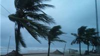 Áp thấp nhiệt đới mạnh lên thành cơn bão số 1
