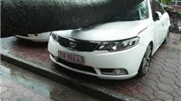 Bão số 3: Cây đổ bẹp ô tô tại Hà Nội