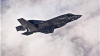 Mỹ kết án một phụ nữ tuồn động cơ máy bay phản lực sang Trung Quốc
