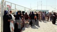 Iraq: IS hành quyết 40 người ở Mosul