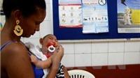 Philippines xác nhận ca nhiễm Zika thứ 6