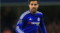 Rực sáng cùng Chelsea, Fabregas vẫn có nguy cơ bị Conte cho 'ra rìa'