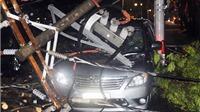 TP.HCM: Lại mưa lớn, cây đổ, cột điện gãy, ô tô hư hại