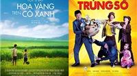 'Trúng số', 'Tôi thấy hoa vàng trên cỏ xanh' tranh tài tại LHP Quốc tế Hà Nội