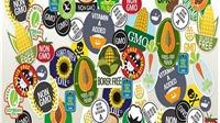 Thực phẩm biến đổi gen: Lợi thì có lợi nhưng còn băn khoăn