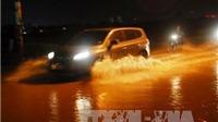Nhật Bản đề xuất dự án 200 triệu USD giúp Việt Nam chống ngập lụt