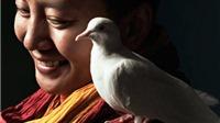 Ani Drolma, cô gái nổi tiếng nhất Nepal: Ni cô kiêm siêu sao nhạc rock