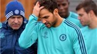 CĐV Chelsea nài nỉ Fabregas: 'Anh là người giỏi nhất, đừng bỏ chúng tôi'