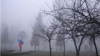 Bắc Bộ trời lạnh, Trung Bộ mưa lớn kèm lũ nguy hiểm