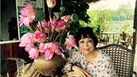 Nguyễn Thị Minh Thái: Muốn sống, muốn yêu, ở tuổi 65