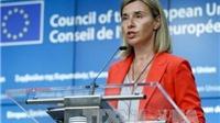 EU họp khẩn về cách thức đối phó với Tổng thống đắc cử Mỹ