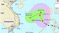 Tin mới nhất về cơn bão số 9 trên Biển Đông và dự báo ảnh hưởng