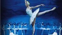 Gần 100 nghệ sĩ Nga đổ bộ TP.HCM diễn ballet Hồ Thiên Nga