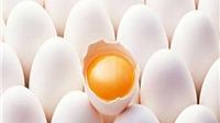 Phân biệt trứng tươi, trứng để lâu