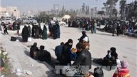 HĐBA LHQ chưa tìm ra cách chấm dứt thảm kịch Aleppo