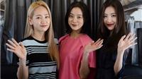 Wonder Girls 'lấn lướt' Michael Learns To Rock ở sân bay Tân Sơn Nhất