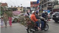 Người nước ngoài thích thú 'tận hưởng' Tết Việt