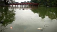 """'Nếu không cải tạo, Hồ Gươm có thể sẽ biến thành bãi lầy..."""""""