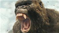 'Kong: Skull Island' những hình ảnh, clip 'nóng' trước giờ ra rạp