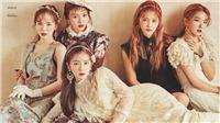 Các nữ thần tượng Hàn Quốc như búp bê trong mốt tóc mùa Xuân này